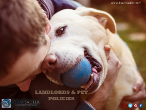 LANDLORDS – TIPS FOR CREATING A PET POLICY